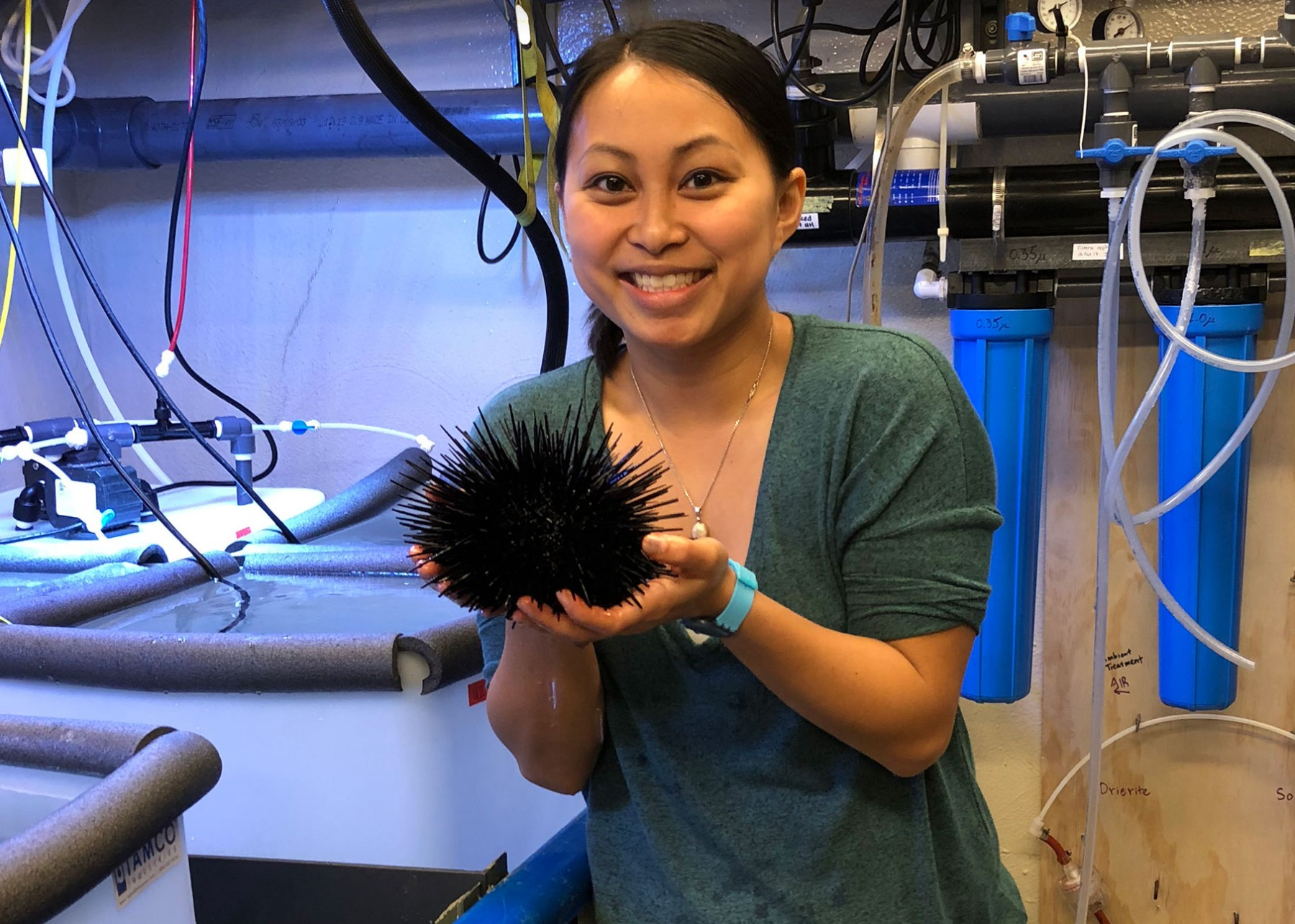 Juliet Wong with red urchin. Credit: Logan Kozal
